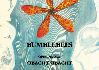 Bumblebees! Finalmente disponibile il CD.